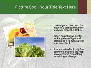 Ramson bunch PowerPoint Template - Slide 20