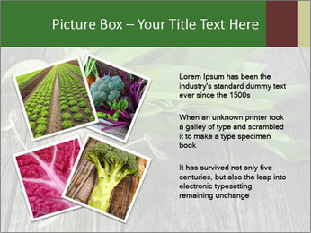 Ramson bunch PowerPoint Template - Slide 23