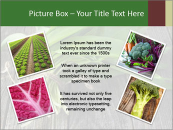 Ramson bunch PowerPoint Template - Slide 24