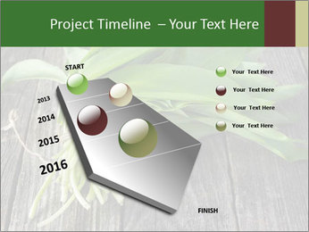Ramson bunch PowerPoint Template - Slide 26