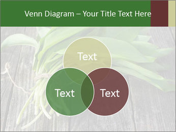 Ramson bunch PowerPoint Template - Slide 33