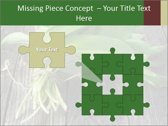 Ramson bunch PowerPoint Template - Slide 45