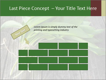Ramson bunch PowerPoint Template - Slide 46
