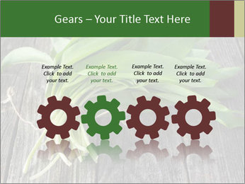 Ramson bunch PowerPoint Template - Slide 48