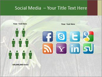 Ramson bunch PowerPoint Template - Slide 5