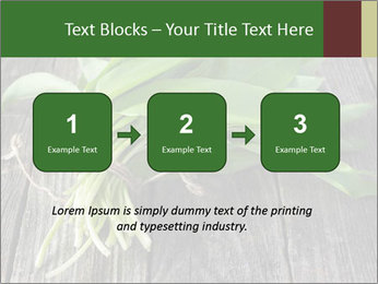 Ramson bunch PowerPoint Template - Slide 71