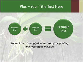Ramson bunch PowerPoint Template - Slide 75