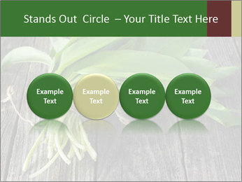 Ramson bunch PowerPoint Template - Slide 76