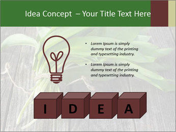Ramson bunch PowerPoint Template - Slide 80