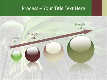 Ramson bunch PowerPoint Template - Slide 87