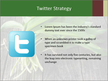 Ramson bunch PowerPoint Template - Slide 9