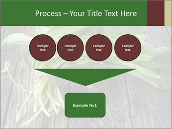 Ramson bunch PowerPoint Template - Slide 93