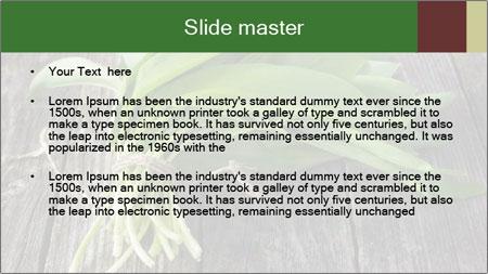 Ramson bunch PowerPoint Template - Slide 2