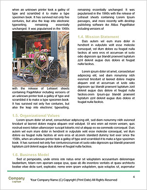 0000091335 Word Template - Page 4