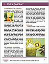 0000091339 Word Template - Page 3