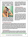0000091340 Word Templates - Page 4