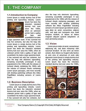 0000091341 Word Template - Page 3