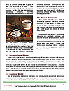 0000091341 Word Templates - Page 4