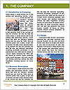 0000091345 Word Template - Page 3