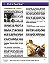 0000091347 Word Template - Page 3