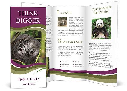 0000091348 Brochure Template
