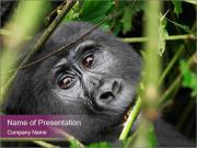Uganda PowerPoint Templates