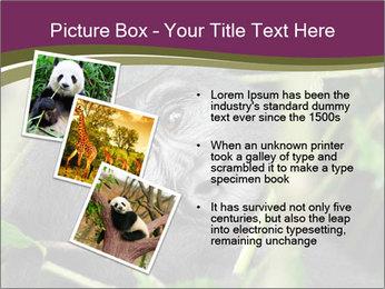 Uganda PowerPoint Template - Slide 17