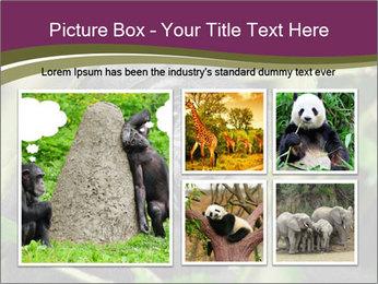 Uganda PowerPoint Template - Slide 19