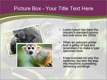 Uganda PowerPoint Template - Slide 20