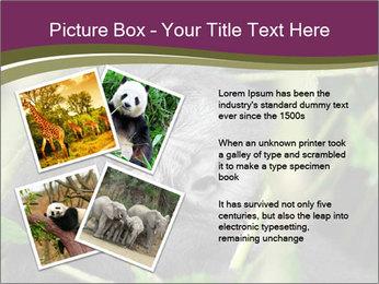 Uganda PowerPoint Template - Slide 23