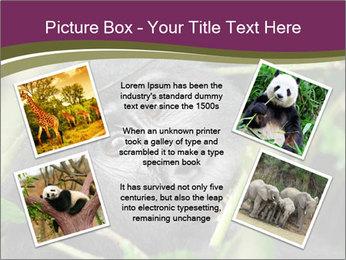 Uganda PowerPoint Template - Slide 24