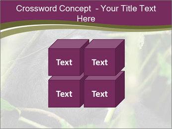 Uganda PowerPoint Template - Slide 39