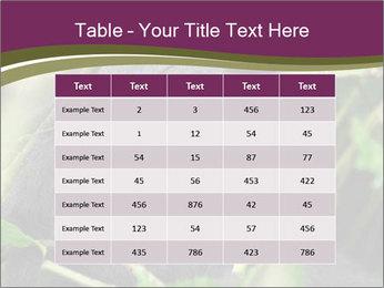 Uganda PowerPoint Template - Slide 55