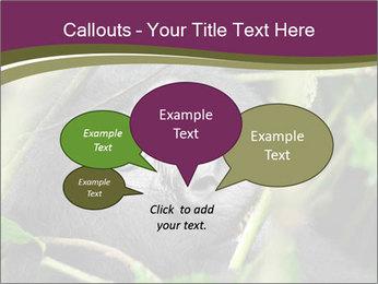 Uganda PowerPoint Template - Slide 73