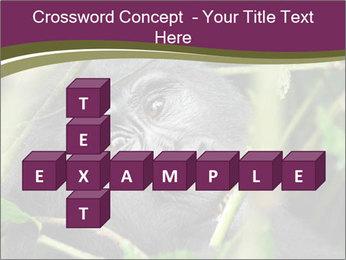 Uganda PowerPoint Template - Slide 82