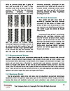 0000091351 Word Template - Page 4
