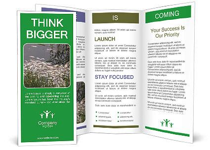 0000091357 Brochure Template