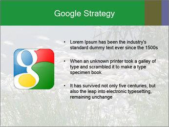 Dead fish PowerPoint Template - Slide 10