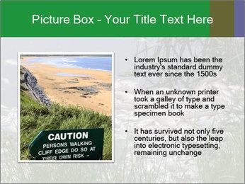 Dead fish PowerPoint Template - Slide 13