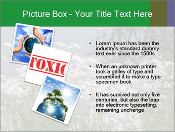 Dead fish PowerPoint Template - Slide 17