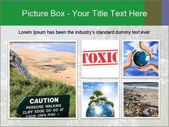 Dead fish PowerPoint Template - Slide 19