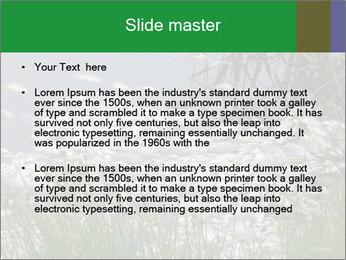 Dead fish PowerPoint Template - Slide 2