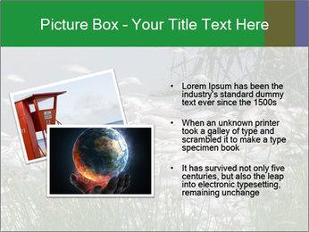 Dead fish PowerPoint Template - Slide 20