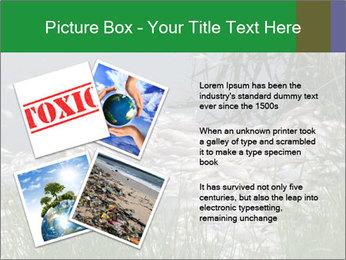 Dead fish PowerPoint Template - Slide 23