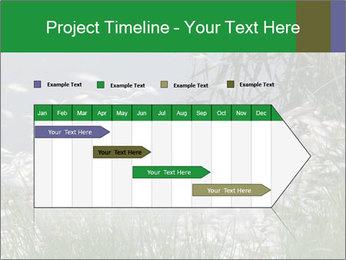 Dead fish PowerPoint Template - Slide 25