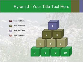 Dead fish PowerPoint Template - Slide 31