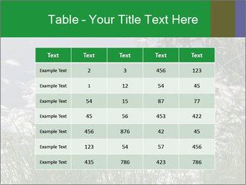 Dead fish PowerPoint Template - Slide 55