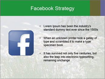 Dead fish PowerPoint Template - Slide 6
