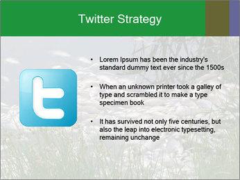 Dead fish PowerPoint Template - Slide 9