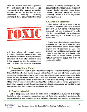 0000091357 Word Template - Page 4
